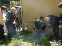Посадка деревьев ветеранами на Аллее Славы МДОУ